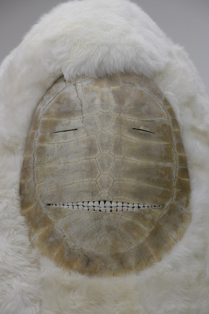 Dersou, 2008, Peau de mouton, bois, carapace de tortue, dents de cheval, bottes et gants en cuir, moquette. Photographie : © Pierre Bohrer